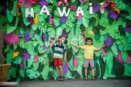 834369132 istock photo Two brother boys sibling kids pose on artificial jungle leaves with plate HAWAI. Dresses in colorful clothes shorts and t-shorts. Smiling and happy. Childhood vacation concept 1205589647