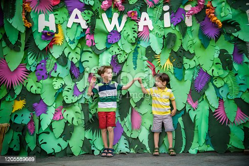 834369132 istock photo Two brother boys sibling kids pose on artificial jungle leaves with plate HAWAI. Dresses in colorful clothes shorts and t-shorts. Smiling and happy. Childhood vacation concept 1205589669