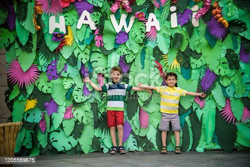 834369132 istock photo Two brother boys sibling kids pose on artificial jungle leaves with plate HAWAI. Dresses in colorful clothes shorts and t-shorts. Smiling and happy. Childhood vacation concept 1205589675