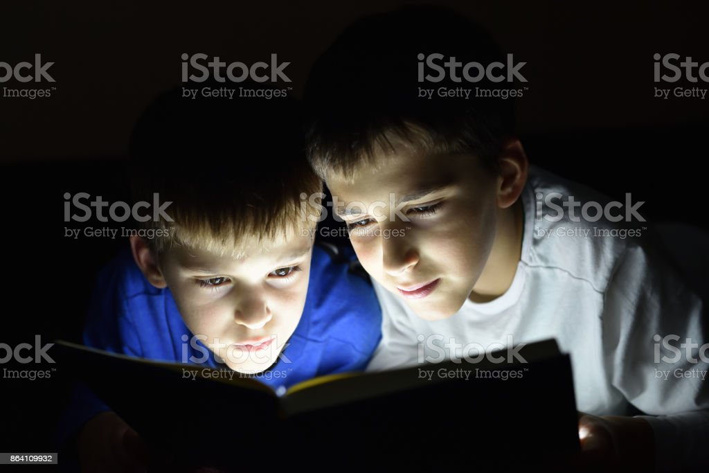 Two brothers reading a book royalty-free stock photo