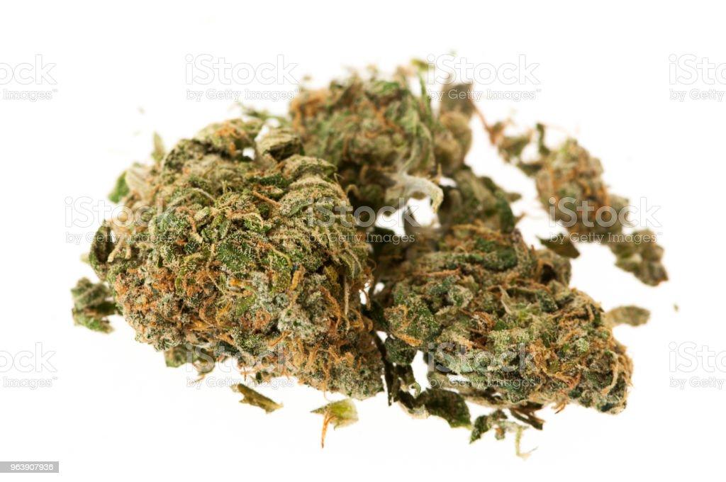 Zwei Knospen von natürlichem Marihuana – Foto