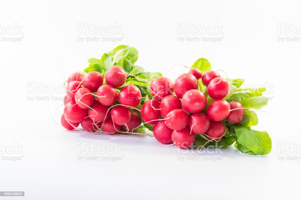 two bunches of fresh small red purple radishes on isolated white background stock photo