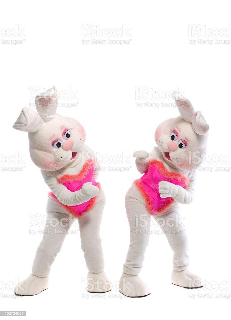 Zwei bunny Mädchen-Maskottchen-Kostüm – Foto