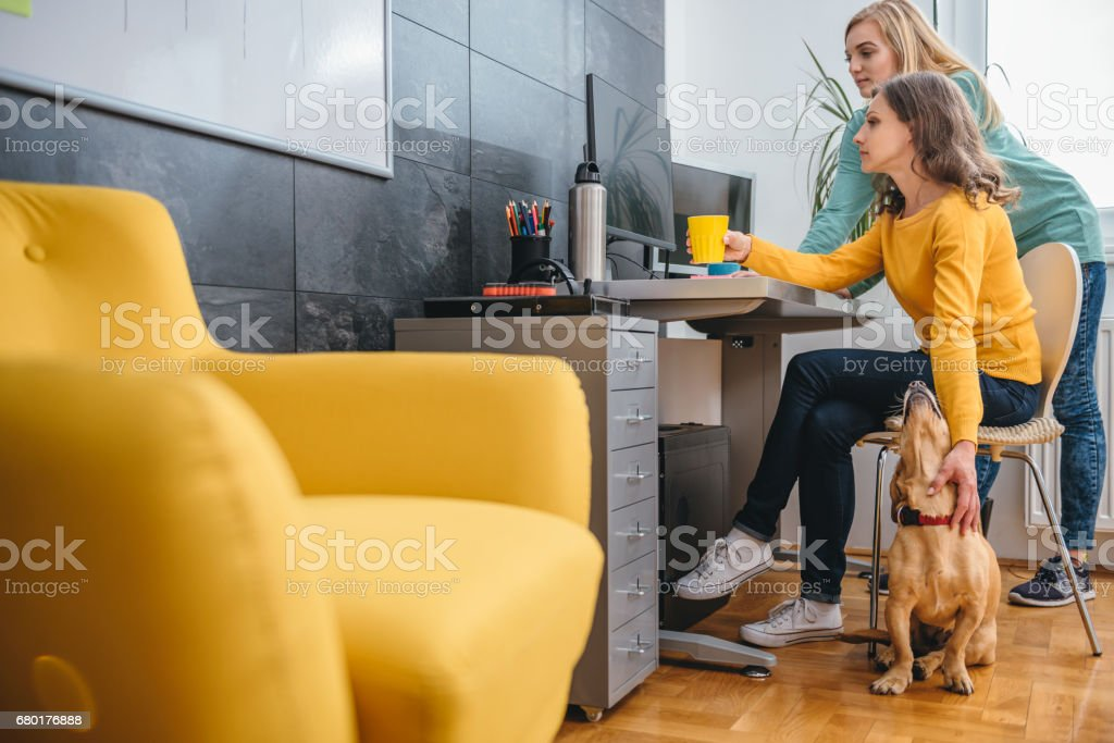 Two business woman by the desk using computer stock photo