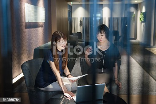 589445574 istock photo Two business women in a meeting 542569784