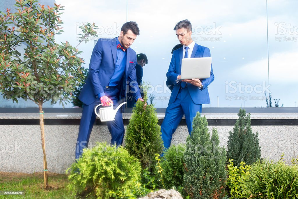 Two businessmen taking care of office building garden. stock photo