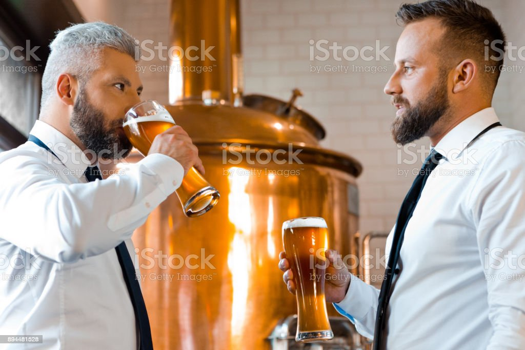 Two businessmen talking over beer in the microbrewery Two businessmen having beer and talking in micro brewery. Brewery business partners meeting with a glass of beer. Adult Stock Photo