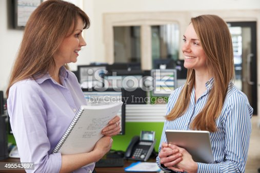 istock Two Businesswomen Having Discussion In Office 495543697