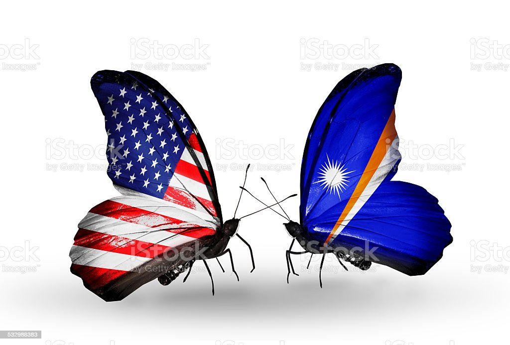 Two butterflies with flags on wings stock photo