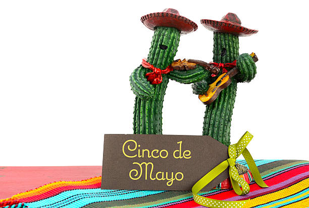 two cacti dressed as a mariachi band for cinco de mayo - cinco de mayo stock photos and pictures