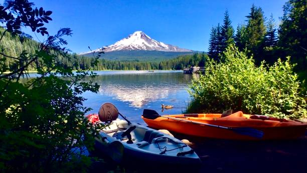 two canoes and a duck at trillium lake with mt. hood reflected mt. hood park division recreation area, trillium lake loop, government camp, or - usa samuel howell stock pictures, royalty-free photos & images