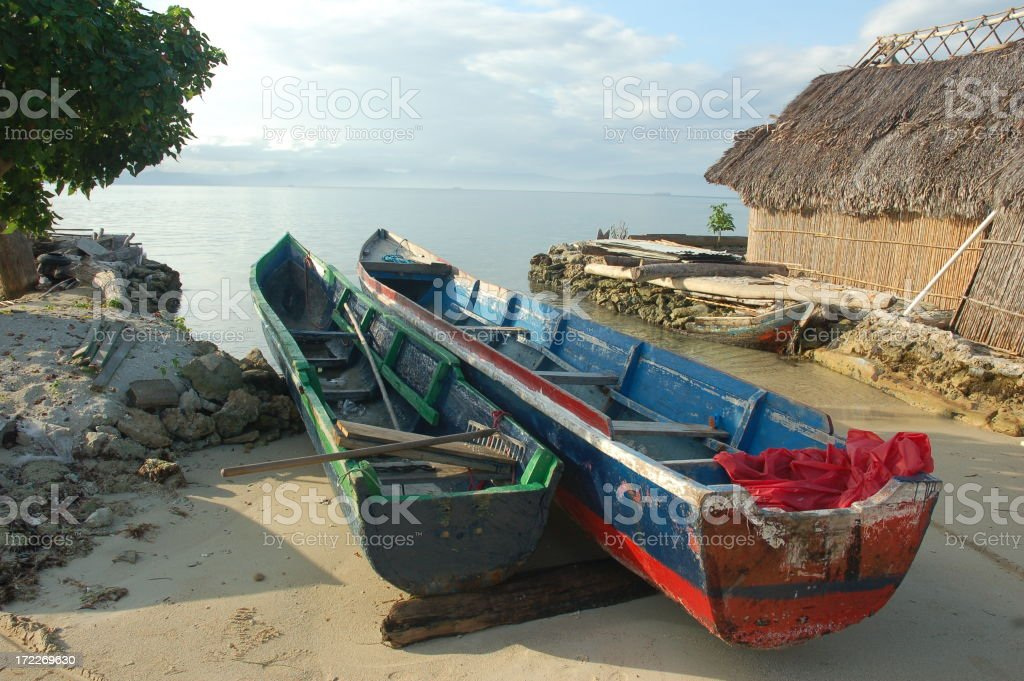 Two Canoes on an Island royalty-free stock photo