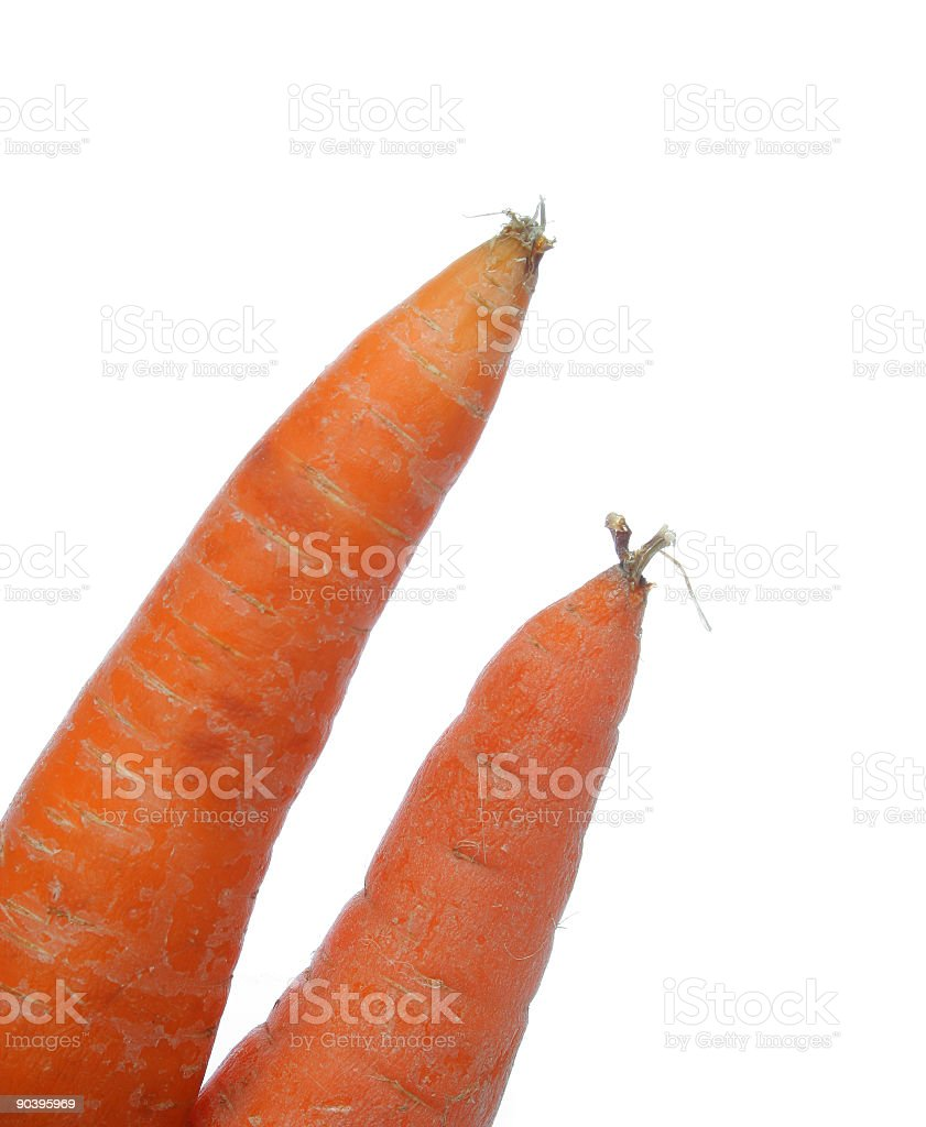 Two carrots royalty-free stock photo