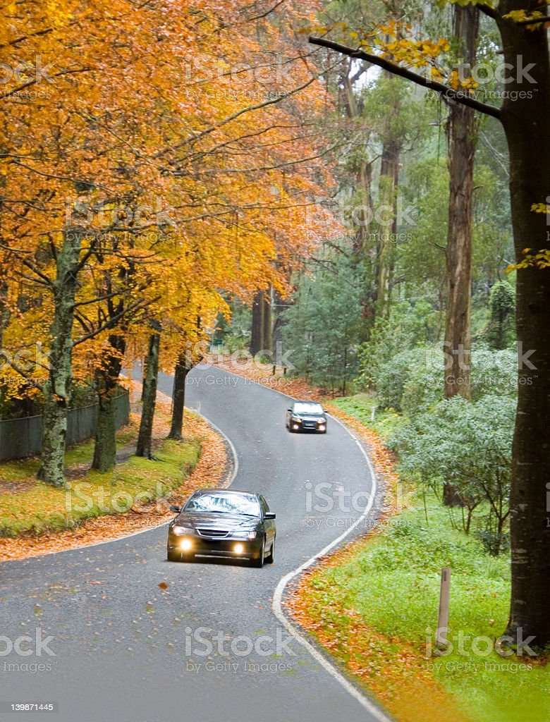 Two cars on a country road through the forest in autumn stock photo