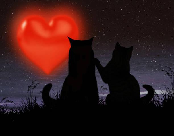 Two cats and a big heart picture id913026634?b=1&k=6&m=913026634&s=612x612&w=0&h=juk9mefnuhv7xlccbmunmztoiihzd5tnlsxlczoeqcw=