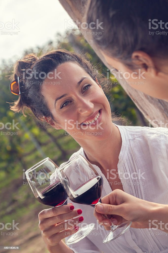 Two Cheerful Female Drinking Wine stock photo