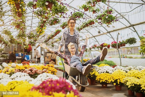 istock Two cheerful smiling florist women worker enjoying a break and ride into a cart in the greenhouse full of colourful flowers and pots. 941260144