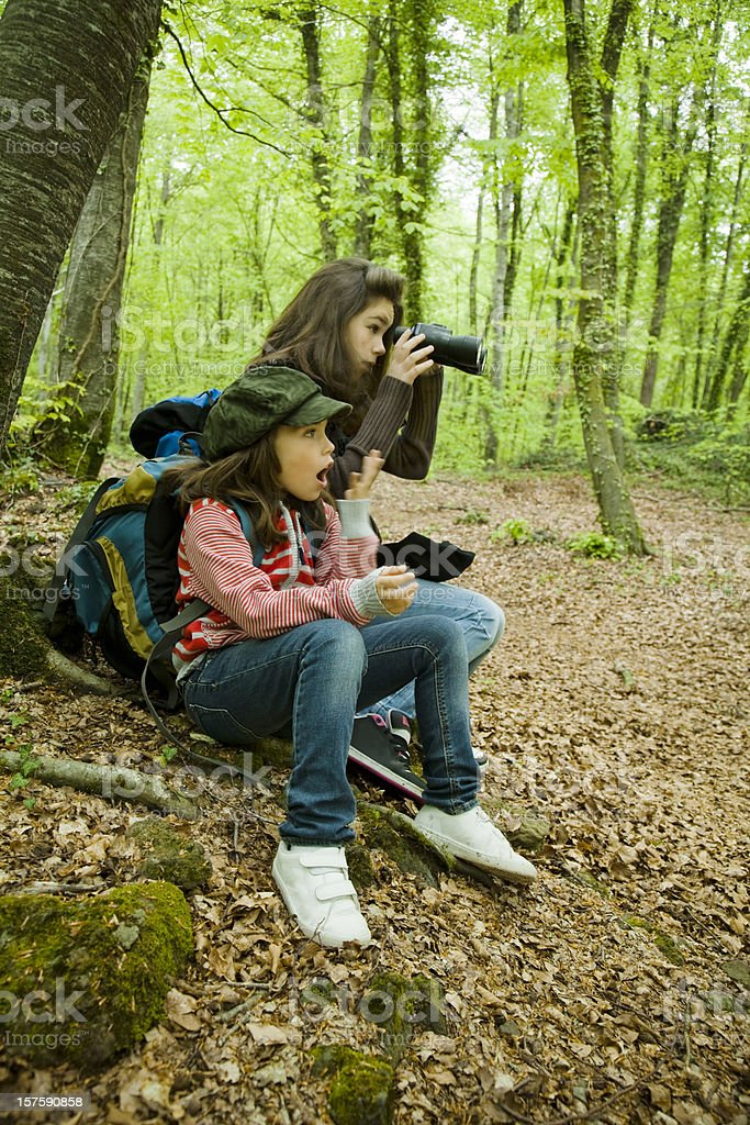 Two child explorers in the forest royalty-free stock photo