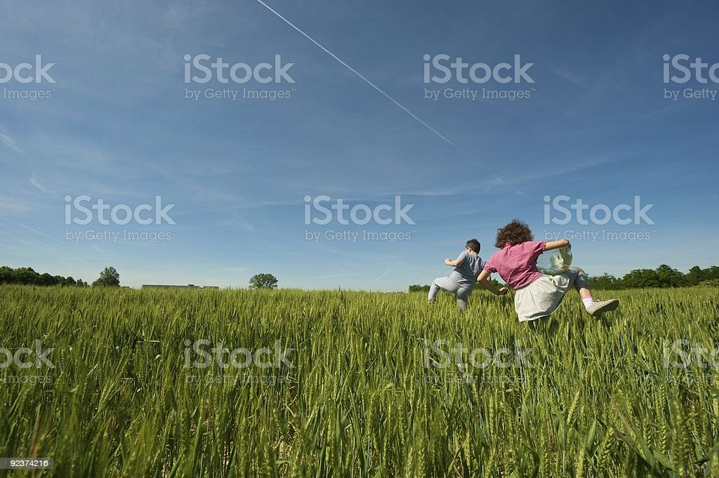 Two children in wheat field royalty-free stock photo
