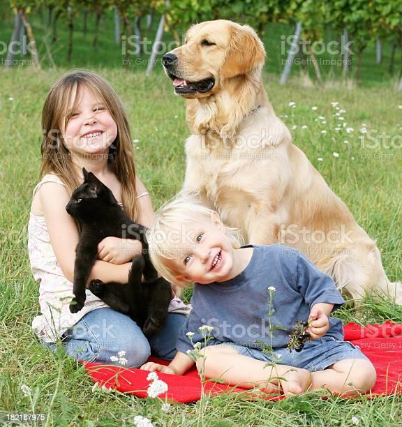 Two children with dog and cat picture id182187975?b=1&k=6&m=182187975&s=612x612&h=l03icnenc0 5mqvwjsh ucrsjpce7kyciikpsd1sqku=