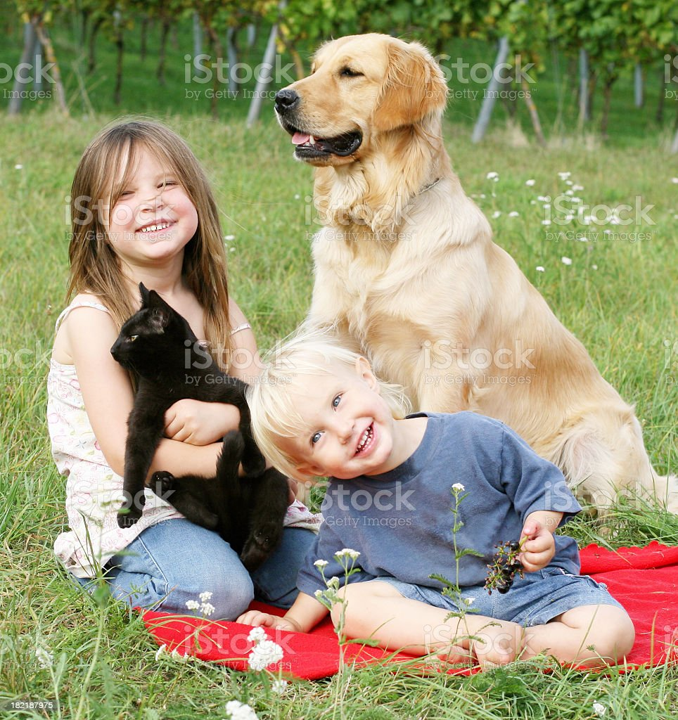 Two children with dog and cat stock photo