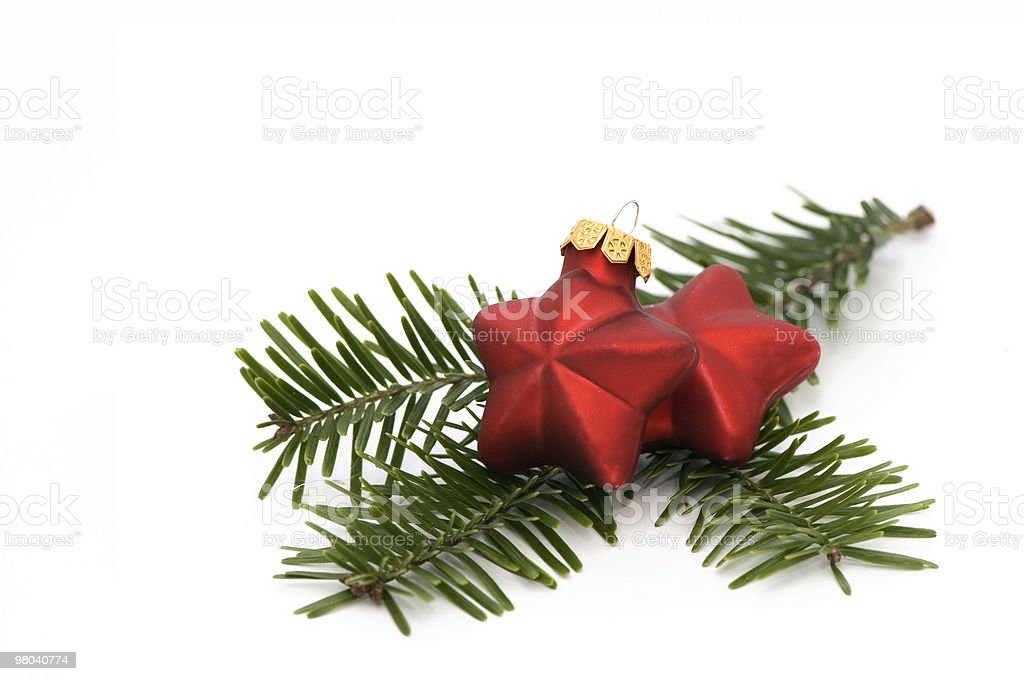 Due stelle di Natale foto stock royalty-free