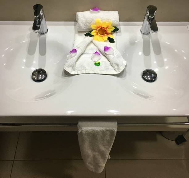 Two clean sinks. stock photo