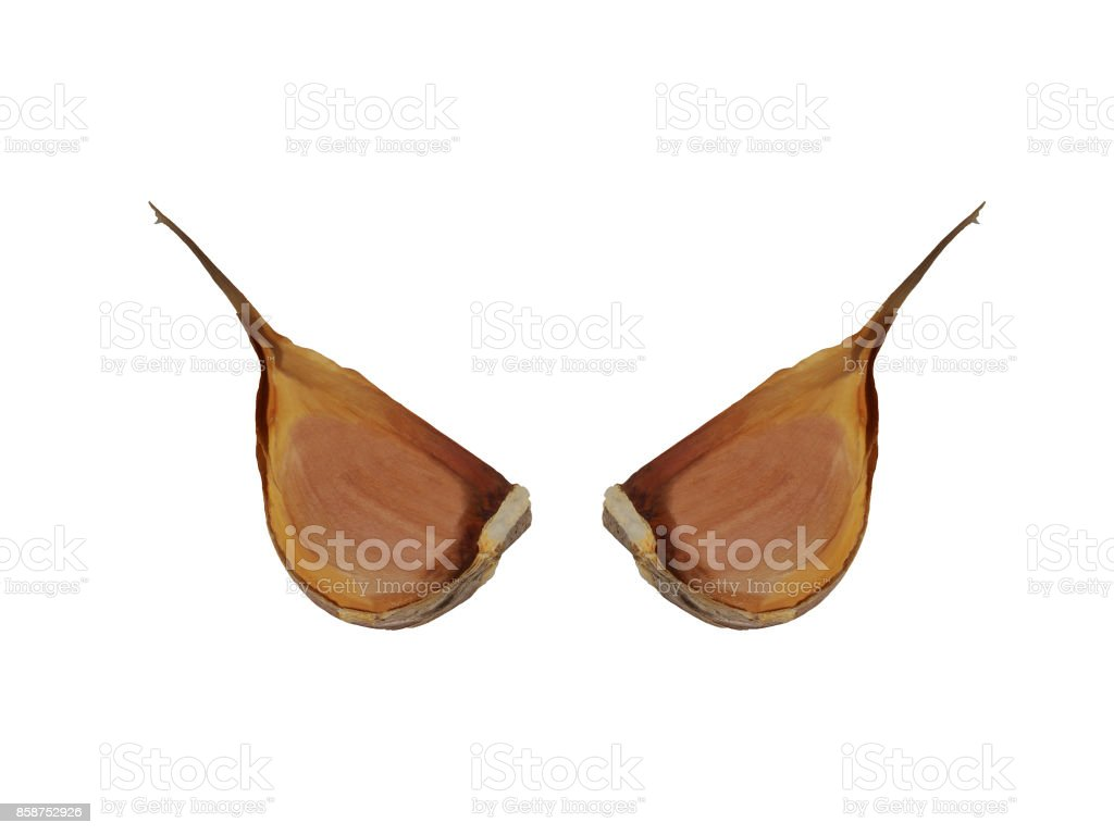 Two cloves of garlic in mirror reflection isolated stock photo