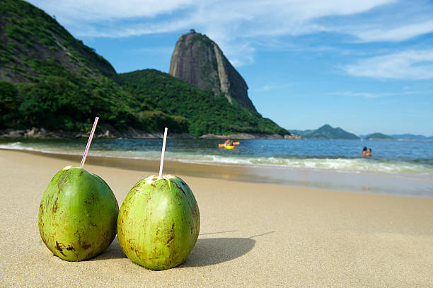 Two Coco Gelado coconuts at Red Beach in Brazil Two fresh coco gelado drinking coconuts on Red Beach Praia Vermelha at Sugarloaf Mountain Rio de Janeiro Brazil gelado stock pictures, royalty-free photos & images