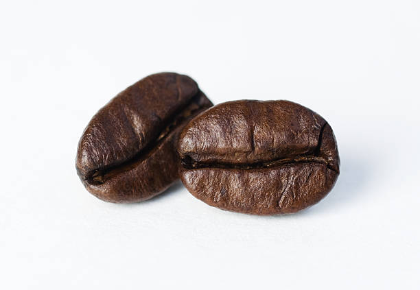 Two Coffee Beans stock photo