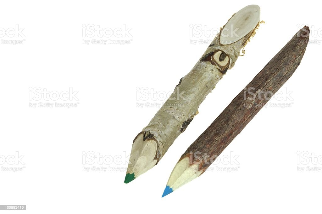Two Color Big Pencil Made From Natural Wood Twig stock photo