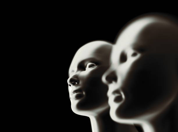 Two computer generated heads. Two computer generated heads. designer baby stock pictures, royalty-free photos & images