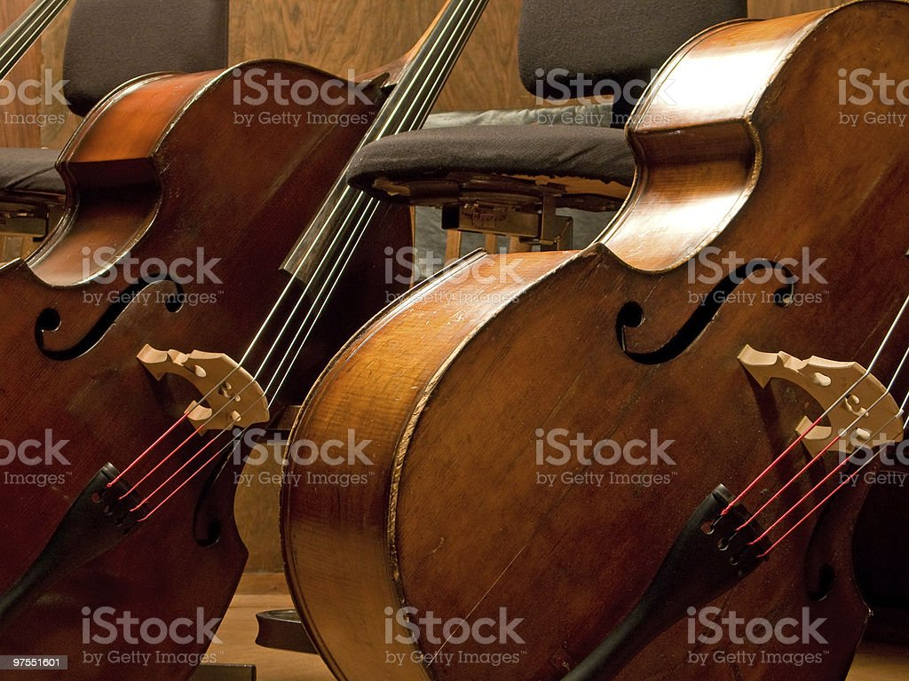 Two contrabasses royalty-free stock photo