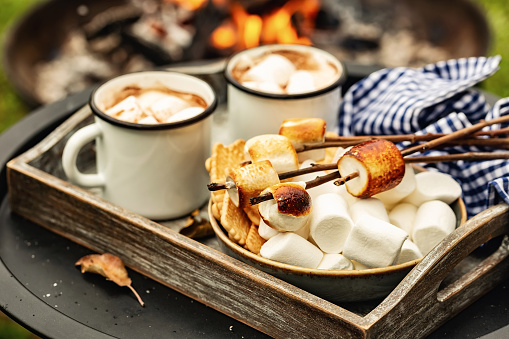 istock two cup of cocoa or hot chocolate and skewers of roasted marshmallows over campfire. autumn holidays outdoors treats 1177188833