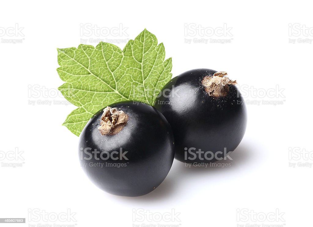 Two currants with leaf stock photo