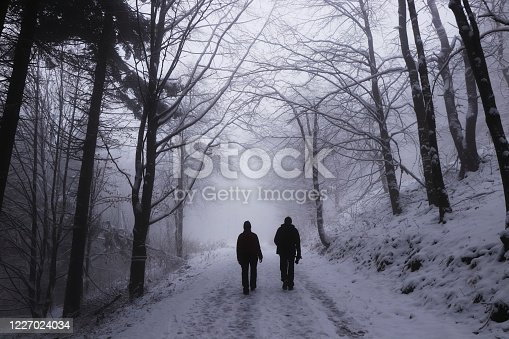 Two cute couples in winter clothes walk through a wall of trees drowned in thick white fog. Woman and man go across destiny. Gloomy, contrite atmosphere. Depressive mod.