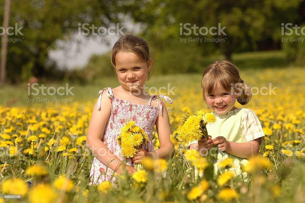 Two cute girls are playing on an dandelion meadow royalty free stockfoto