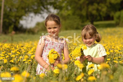 istock Two cute girls are playing on an dandelion meadow 89505236