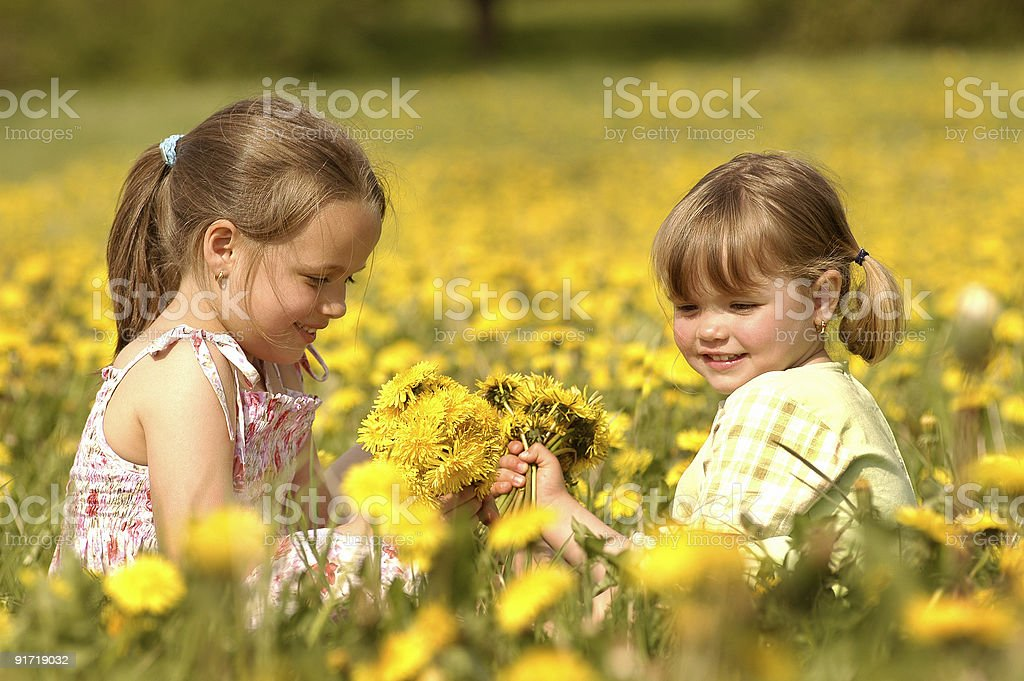 Two cute girls are playing on an dandelion meadow royalty-free stock photo