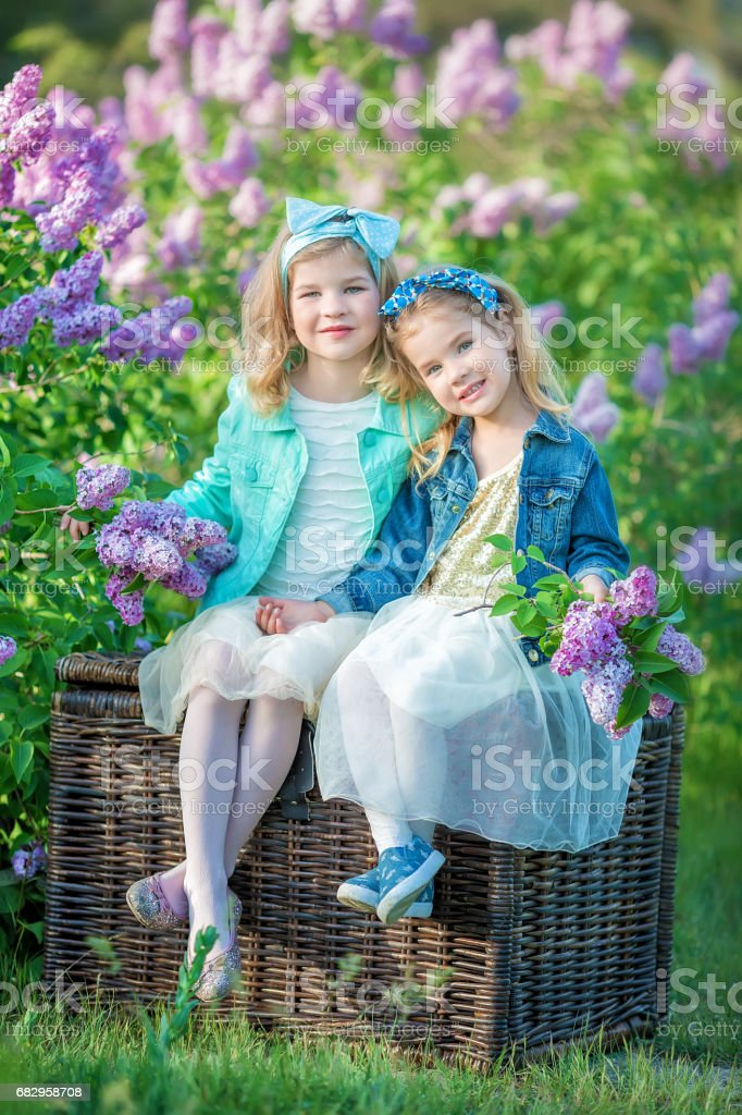 two cute smiling girls sisters lovely together on a lilac field bush all wearing stylish dresses and jeans coats royalty-free stock photo