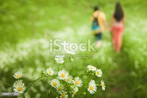 istock Two defocused girls going away in nature, focus on flowers. 496317092