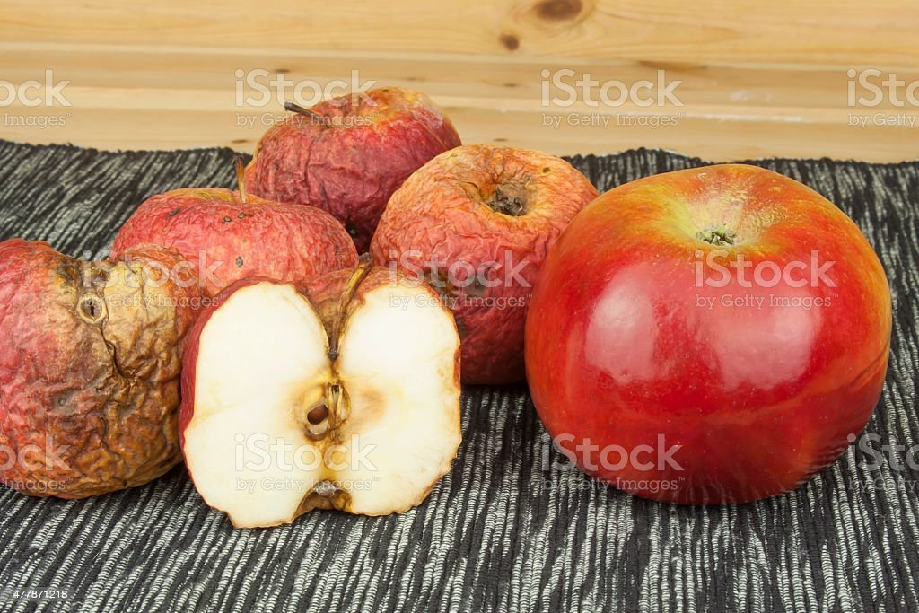 Two different apples, fresh and withered stock photo