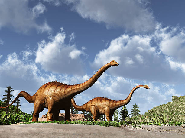 Two dinosaurs Diplodocus stock photo