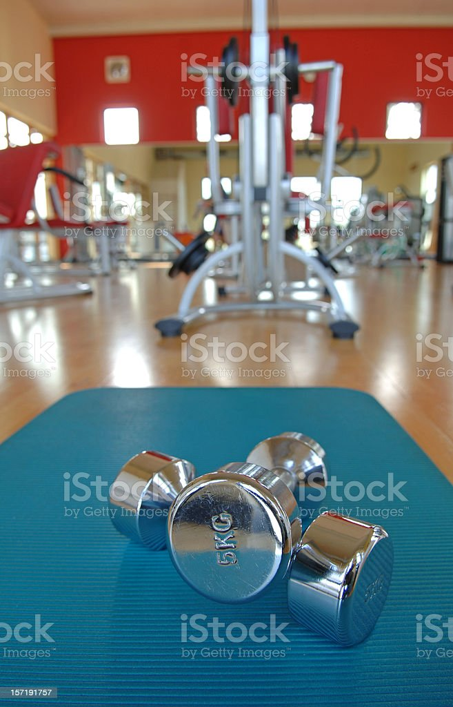 Two dumbbells in a gym royalty-free stock photo