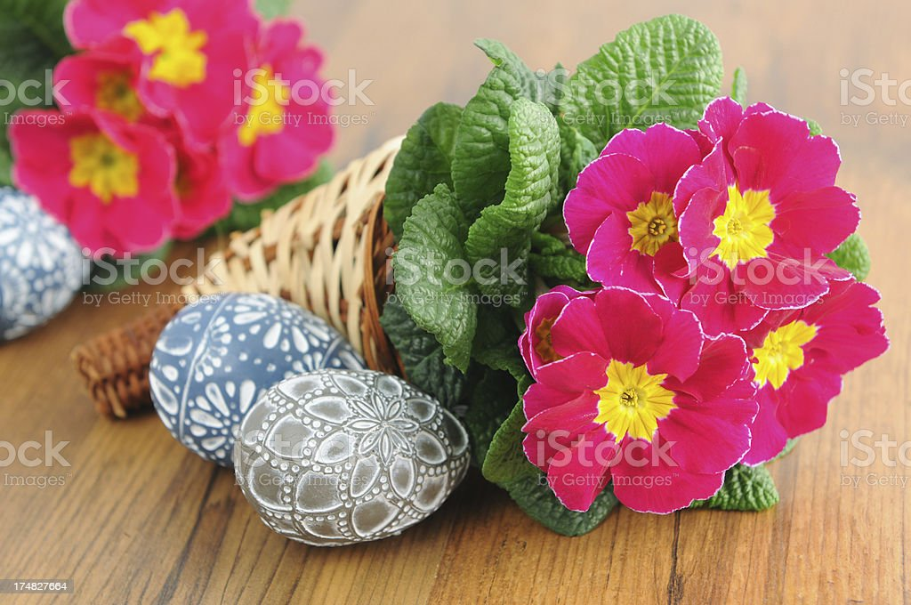 two Easter egg with Primrose (Primula) stock photo