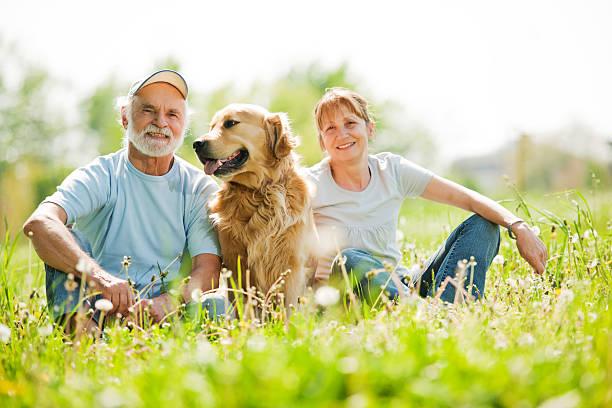 Two elderly people with their dog in the park picture id169947064?b=1&k=6&m=169947064&s=612x612&w=0&h=ol pk8emmuwk9yk9hpqvqjpufrgoeu3zrabb86rhrhc=