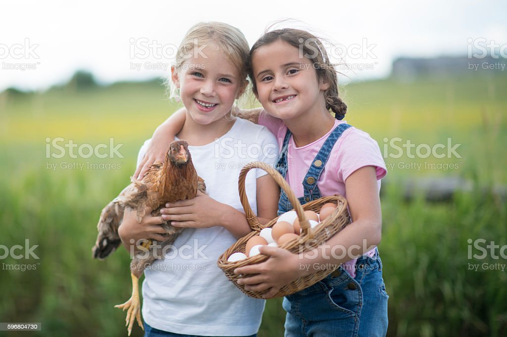 Two elementary age girls are outside on the farm and stock photo