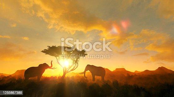 Two elephants next to a tree