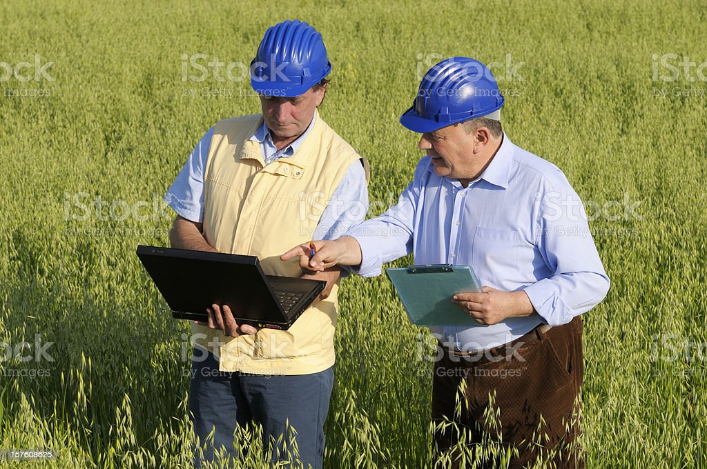 Two Engineers Using PC in the Countryside royalty-free stock photo