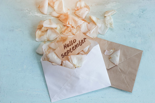 two envelopes with fading rose petals